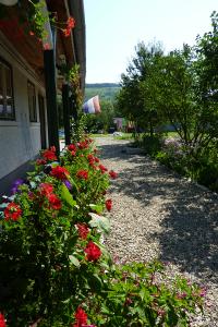 Camping Entrance
