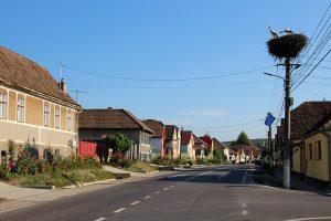 Romanian village storks