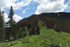 Scenery Romania